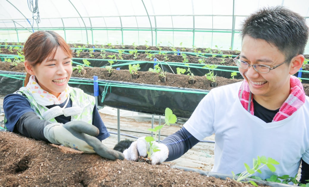 農業体験(校外学習)
