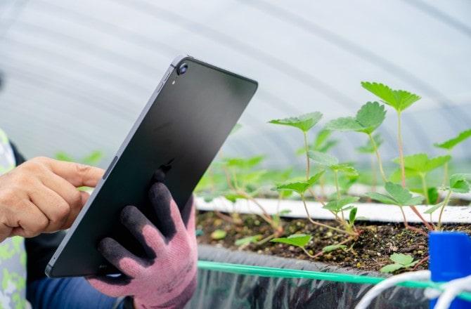 IoT農業